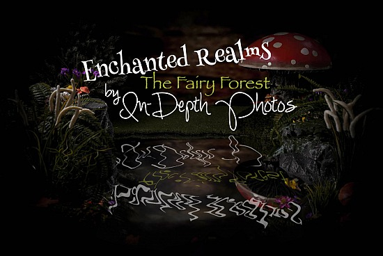 Enchanted Realms - The Fairy Forest